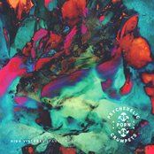 Album cover of High Visceral, Pt. 2, by Psychedelic Porn Crumpets