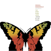 Meshell Ndegeocello: Dance of the Infidel: The Spirit Music Jamia