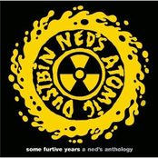 Some Furtive Years: a Ned's Anthology