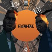 Normal (feat. Kojey Radical) - Single