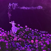 A-OK (Everything's Perfect) - Single