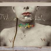 CocoRosie - Tales of a GrassWidow Artwork