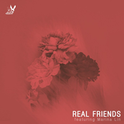 Real Friends (Guitar Acoustic)