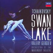 Mariinsky Orchestra: Peter Tchaikovsky. The Swan Lake