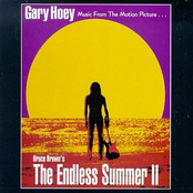 Gary Hoey: The Endless Summer II