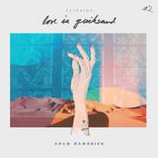 Adam Hambrick: Flipside: Love Is Quicksand