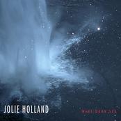 Jolie Holland: Wine Dark Sea