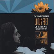 David Newman: Lotus Feet: A Kirtan Revolution
