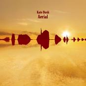 Aerial (disc 1: A Sea of Honey)