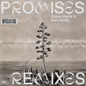 Promises (with Sam Smith) [Remixes]