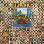 The Ozark Mountain Daredevils: The Ozark Mountain Daredevils