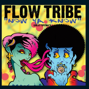 Flow Tribe: Now Ya Know