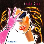 Chaka Khan: I Feel For You