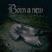 Born A New: Peace Is Dead - EP