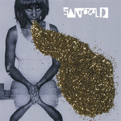 Santigold: Santogold