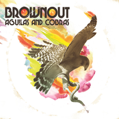 Brownout: Aguilas and Cobras