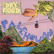 Palehound: Dry Food