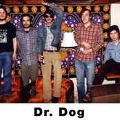 Dr. Dog b64392c004ee40019d80ca32a58e25b6
