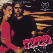 Gewandhausorchester: Wild at Heart