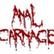 anal carnage