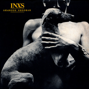 INXS - Shabooh Shoobah Artwork