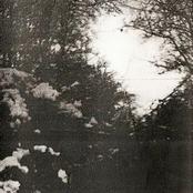 The Third Winter