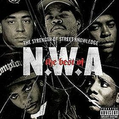 The Best Of N.W.A. - The Strength Of Street Knowledge