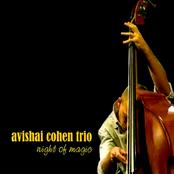 Avishai Cohen Trio: Night of Magic