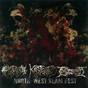 Ingested: North-West Slam-Fest