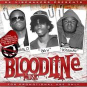 Bloodline Music
