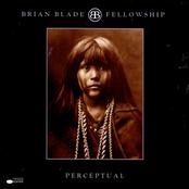 Brian Blade: Perceptual