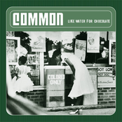 The Light by Common
