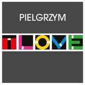 Pielgrzym (Radio Edit)