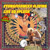 YUNGFISHMIXXX : LIVIN LIFE SO PLUSH
