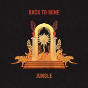 Back to Mine: Jungle (DJ Mix)