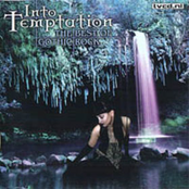 Into temptation (The best of gothic rock)