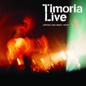 Timoria Live: Generazione senza vento