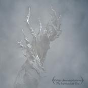 Ivardensphere: The Methuselah Tree