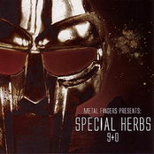 Metal Fingers Presents: Special Herbs 9+0