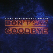 Don't Say Goodbye (feat. Tove Lo)