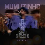 A Voz Do Meu Samba - Ao Vivo