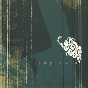 Tryptamin