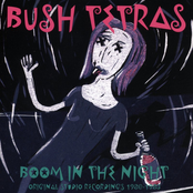 Bush Tetras: Boom in the Night