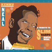 A Tribute to Slim Harpo & Raful Neal