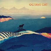 Octave Cat: Octave Cat