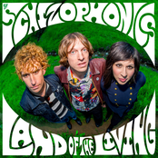 The Schizophonics: Land of the Living