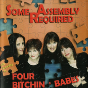 Four Bitchin' Babes: Some Assembly Required