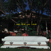 I Never Liked Your Friends - EP