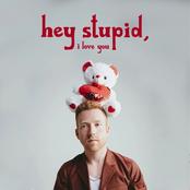 Hey Stupid, I Love You