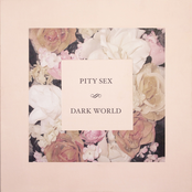 Album cover of Dark World, by Pity Sex